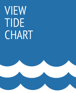 view-tide-chart