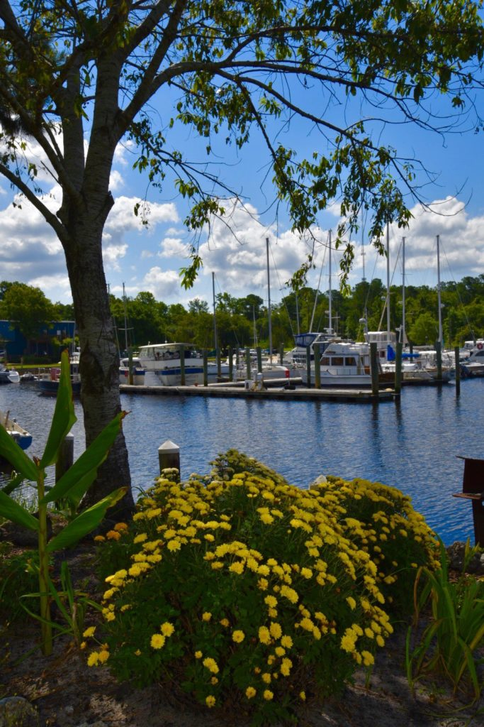 wilmington marine center boat dock view
